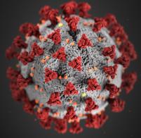 Как остановить эпидемию, ничего не делая